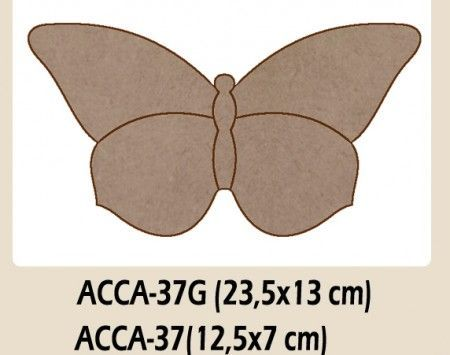 ACCA 37