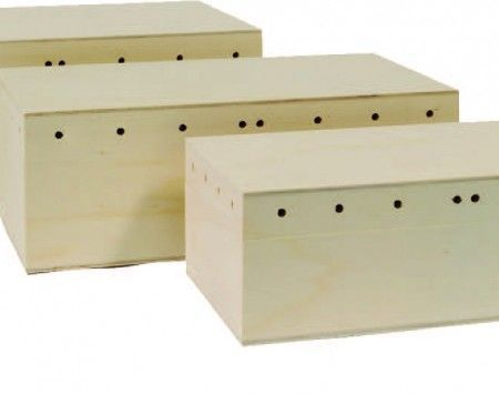 caja lazos