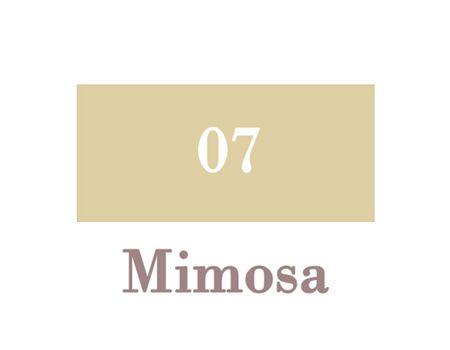 07_Mimosa