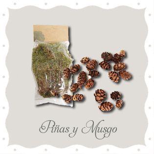 Piñas y Musgo